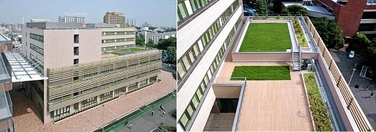 左/新本館棟北側には東西軸のガレリア 右/屋上緑化など環境技術を積極採用