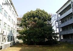 大阪大学豊中キャンパス講義棟